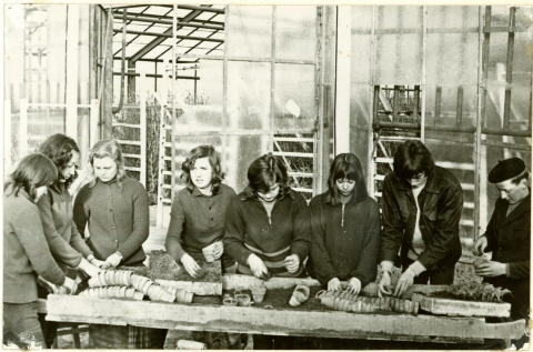 W czasie zajęć praktycznych w gospodarstwie pomocniczym, rok szkolny 1972/73