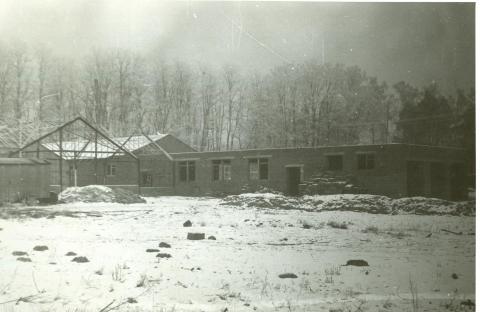 Szklarnie i budynki gospodarstwa pomocniczego w budowie. Rok szkolny 1978/79